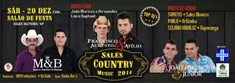 Sales Country 2014